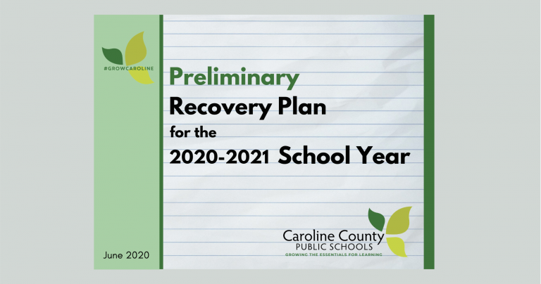 Preliminary Recovery Plan Cover